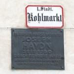 Haydn's childhood home