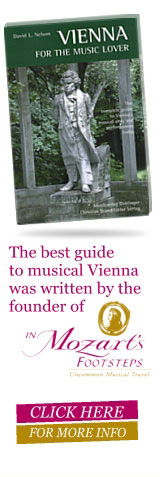 Vienna is for Music Lovers banner